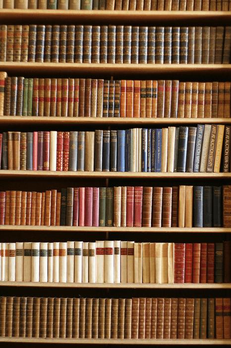 Bücherregal bauen